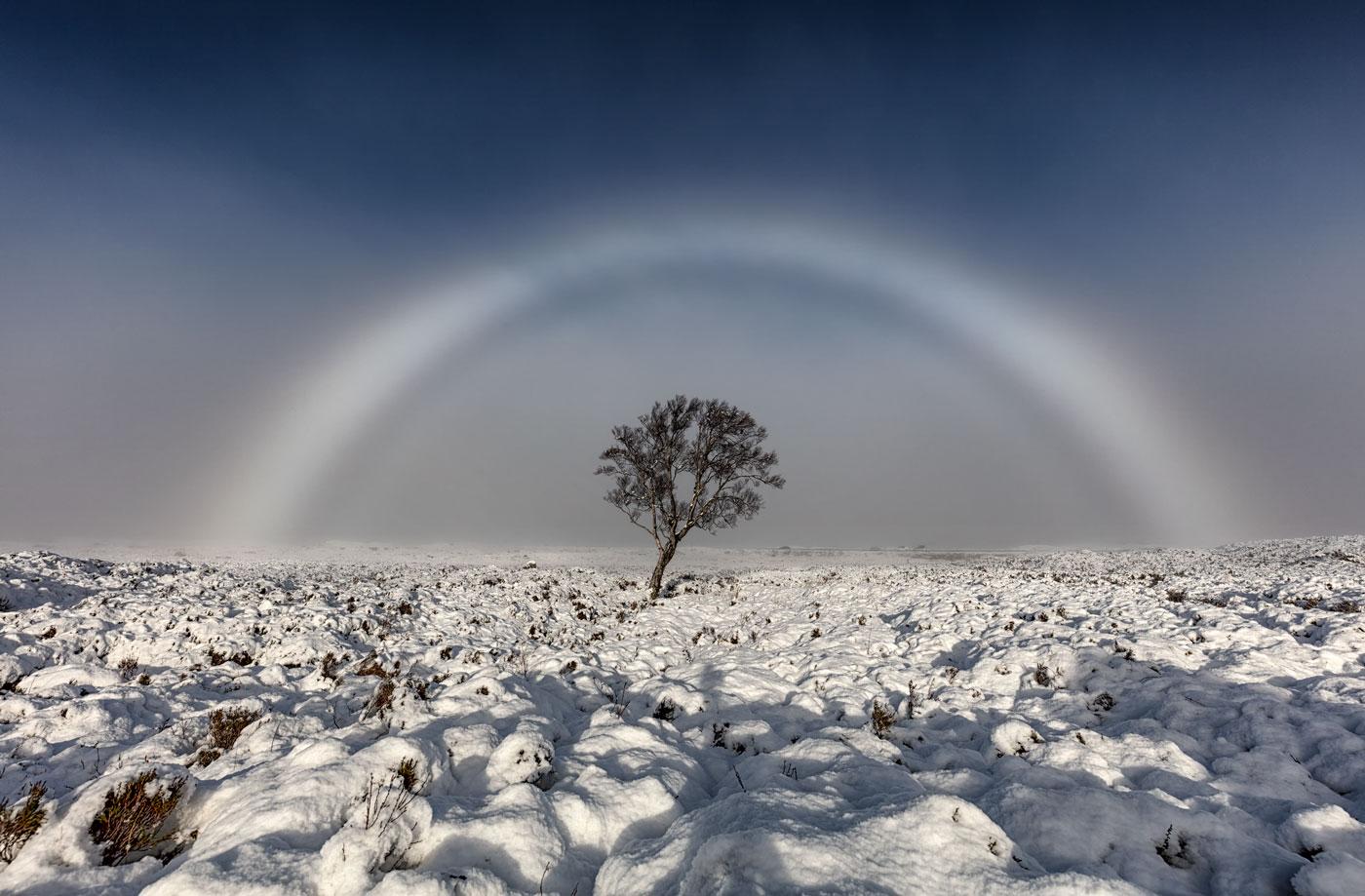 Aparece na Escócia um mágico arco-íris branco
